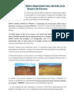 Lectura FCC-Ministerio de Cultura Inspeccionó Zona Afectada en La Reserva de Paracas