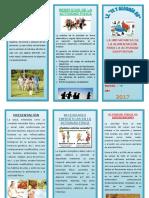Triptico de Nutricion Deportiva Gghjghghghg