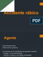 Accidente Rabico