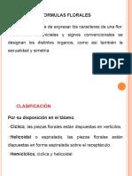 Diagrama Formula Floral(2)