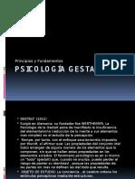 Psicologa Gestalt