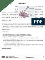 Lisosomas y Peroxisomas (Biología)