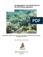 Grouper Spawning Aggregations