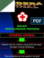 Cedera Spinal
