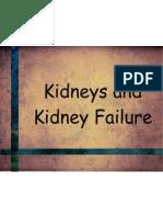 Kidney Presentation