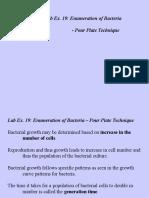 Lab19-Pourplate