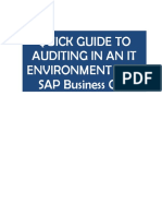 UE SAP Auditing