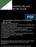 diseminación de una infeccion oral