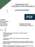 Seminarski Rad Biohemija