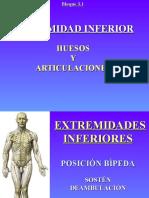 Presentación sobre extremidades inferiores (Anatomía Humana)