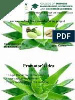 Annu CP Projest