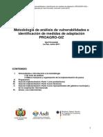 Metodología de Análisis de Vulnerabilidades e Identificacion de Medidas ACC (Borrador)
