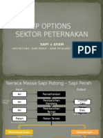 Revisi Cp Options & Action Plan Peternakan