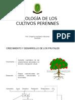 Cultivos perennes (1)