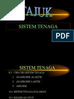 sistemtenagasainssukan-120311121735-phpapp02