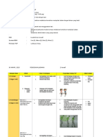 RPH PJ THN 2 (2a) -Kelecek Bola-.docx
