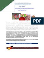 1704_confites_0304.pdf
