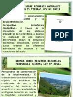 RECURSOS NATURALES RENOVABLES TIERRAS LEY Nº 28611.pptx
