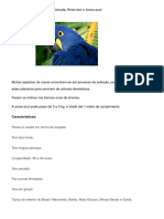 Animais Brasileiros