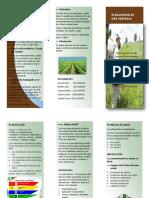 Pesticidas de uso agricola