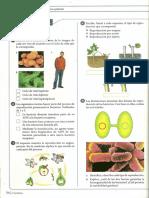 Taller Reproduccion de Moneras a Plantas