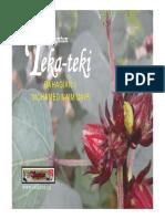 teki-1.pdf