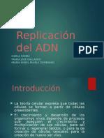 Diapositivas de Biologia Replicacion