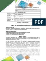 PREINFORME.pdf