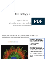 Cell Biology 6