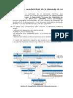 Cuáles Son Las Características de La Demanda de Su PYME (1)