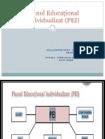 Planul Educational Individualizat Pei