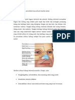 Anatomi Fisiologi Saluran Nafas Atas