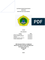 Laporan Resmi Protein dan Asam Amino.docx