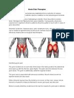 Groin Pain Therapies