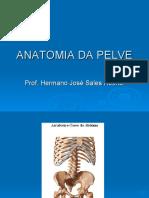 ANATOMIA DA PELVE.pdf