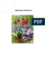 Sadnja Lala i Lukovica