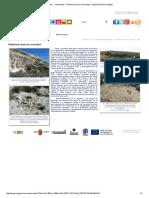 Fósiles - Yacimientos - Patrimonio para la sociedad - Región de Murcia Digital.pdf
