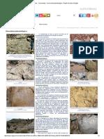 Fósiles - Yacimientos - Diversidad paleontológica - Región de Murcia Digital.pdf