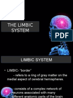 Limbic System Reporting