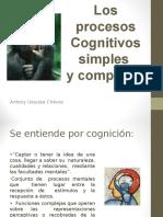 Los Procesos Cognitivos Simples y Complejos TN DI
