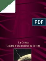 Célula  Eucariota.ppt
