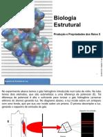 bioestrutural12