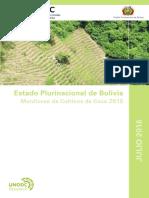 Bolivia Informe Monitoreo Cultivos Coca 2015