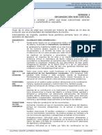 Semana 2 - ORGANIZACIÓN SUB CORTICAL.docx