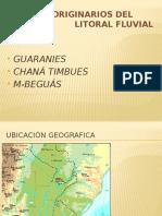 Pueblos Originarios Del