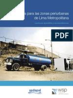 COVAAP-PAS.pdf