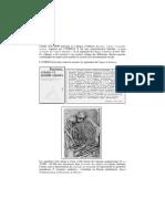 cheikh anta diop unite espece humaine.pdf