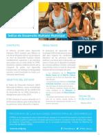 PNUD_IndiceDeDesarrolloHumanoMunicipal.pdf