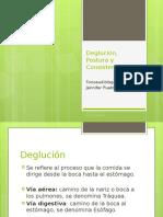 Deglución, Postura y Consistencias (1)