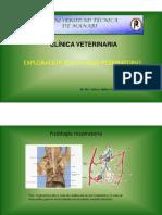 4.- Exploración Del Sistema Respiratorio